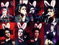 billie joe!