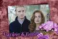carlisle and esme - harry-potter-vs-twilight photo