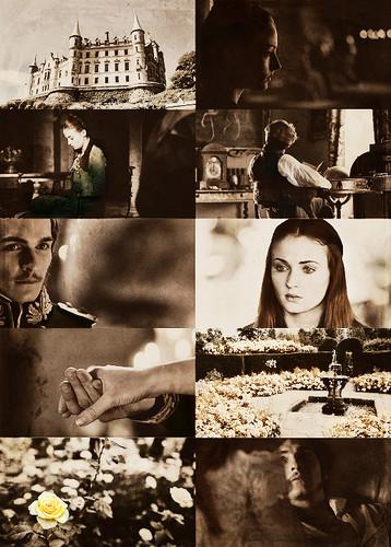 Sansa Stark & Willas Tyrell