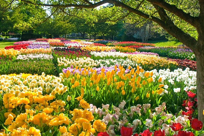 Spring Images Spring Wallpaper 2 Wallpaper And Background