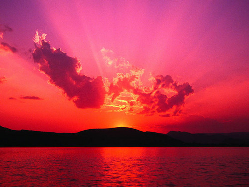 sunset of mindles behavior