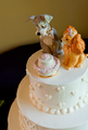 wedddings - weddings photo