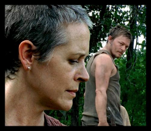 ★ Carol & Daryl ☆