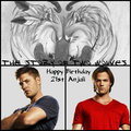★ Happy 21st Birthday Anjali ☆ - anj-and-jezzi-the-aries-twins fan art