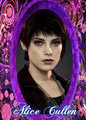 Alice Cullen - twilight-series fan art