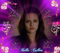 Bella Cullen - twilight-series fan art