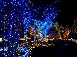 Japan karatasi la kupamba ukuta containing a kisima, chemchemi titled Blue Xmas in Tokyo