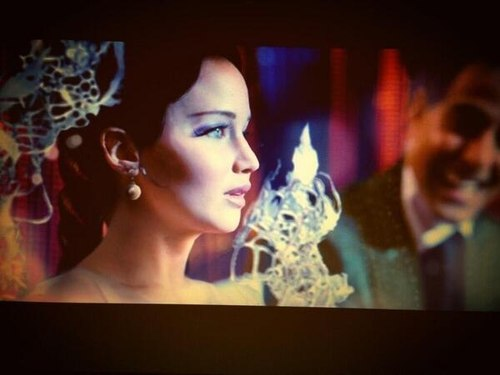 Catching Fire-screencapture from the movie