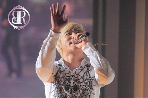D-LITE D'scover Tour 2013 (Day 1: at Budokan, Tokyo, 日本 on March 30th, 2013)