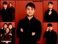 Dan at Sundance - daniel-radcliffe wallpaper