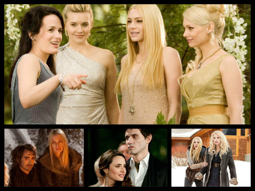 Twilight Series پیپر وال containing a bridesmaid called Denali Coven