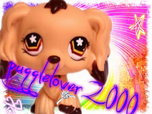 For pugglelover2000