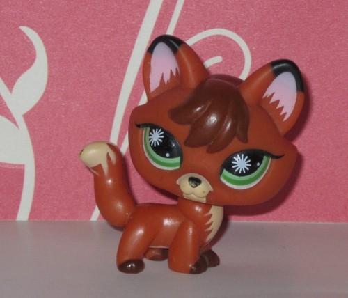zorro, fox #807
