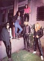 Guns N' Roses - guns-n-roses photo