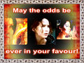 Hunger games image re capped2 - the-hunger-games fan art