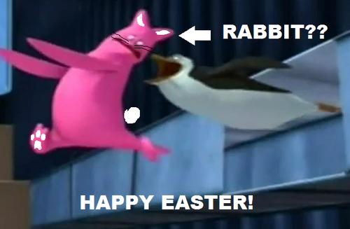 I Look Like a Rabbit!