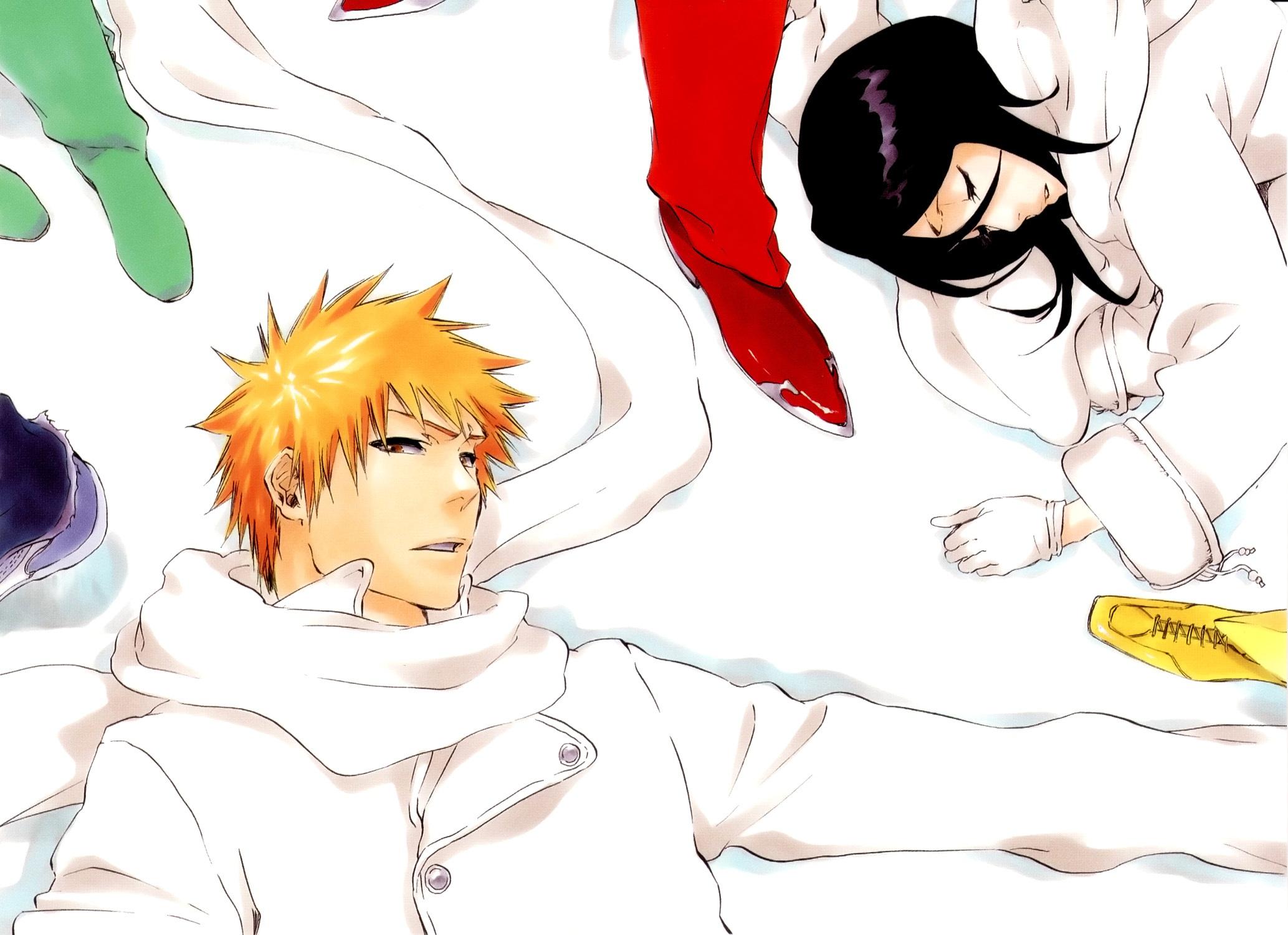 Kurosaki Ichigo images Ichigo & Rukia HD wallpaper and ...