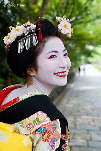 Japan karatasi la kupamba ukuta containing a bouquet, a kimono, and a camellia titled kimono