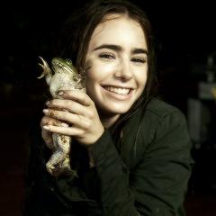 Lily आइकनों