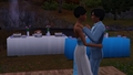 Modern Family - the-sims-3 photo