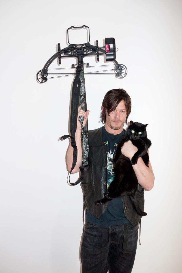 Norman Reedus Images HD Wallpaper And Background Photos
