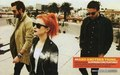 Paramore on Alternative Press magazine - paramore photo