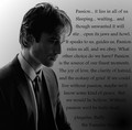 Passion - damon-salvatore photo