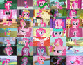 Pinkie pie bunch