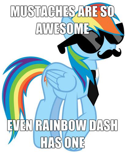 Ranbow Dash