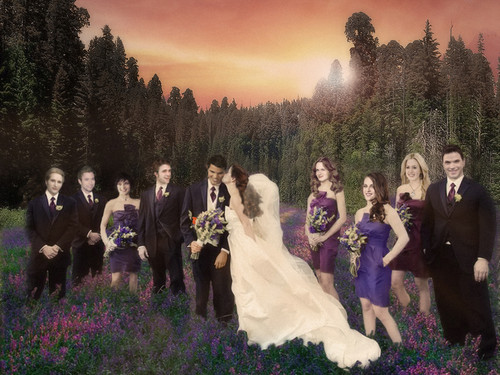 Twilight Series wallpaper containing a bridesmaid called Renesmee and Jacob