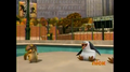 Skipper Loses it  - penguins-of-madagascar photo