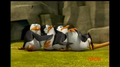 That looks painful.. - penguins-of-madagascar photo