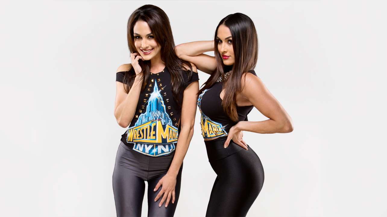 the bella twins wwe divas photo 34183068 fanpop