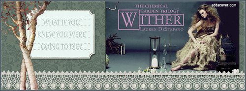 The Chemical Garden