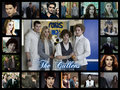 The Cullens - twilight-series fan art