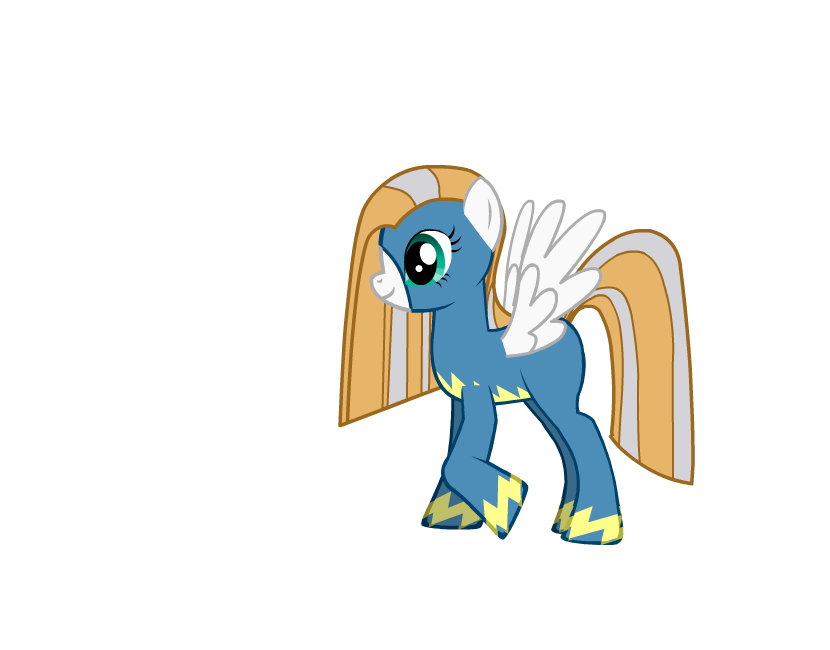 The Wonderbolts Trainer