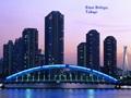 Tokyo Eitai Bridge
