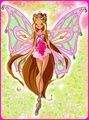 Winx Club🐥 - the-winx-club photo