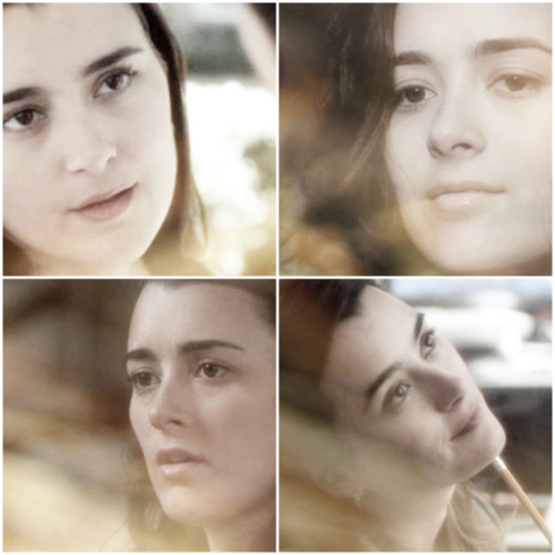 Ziva David - Faces