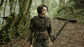 arya  - arya-stark photo