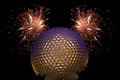 disney world - walt-disney-world photo