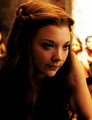 margaery - house-baratheon photo