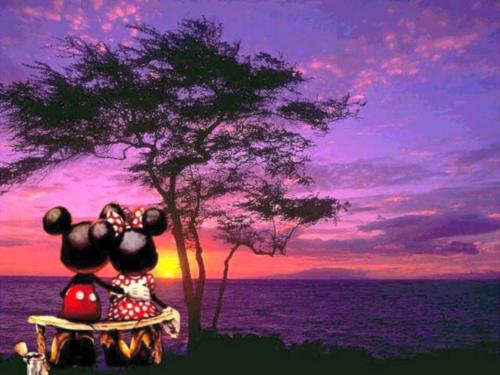 Mi Mickey And Minnie Photo 34190529 Fanpop
