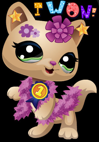Littlest Pet comprar Club wallpaper titled my kitty won the fashion contest