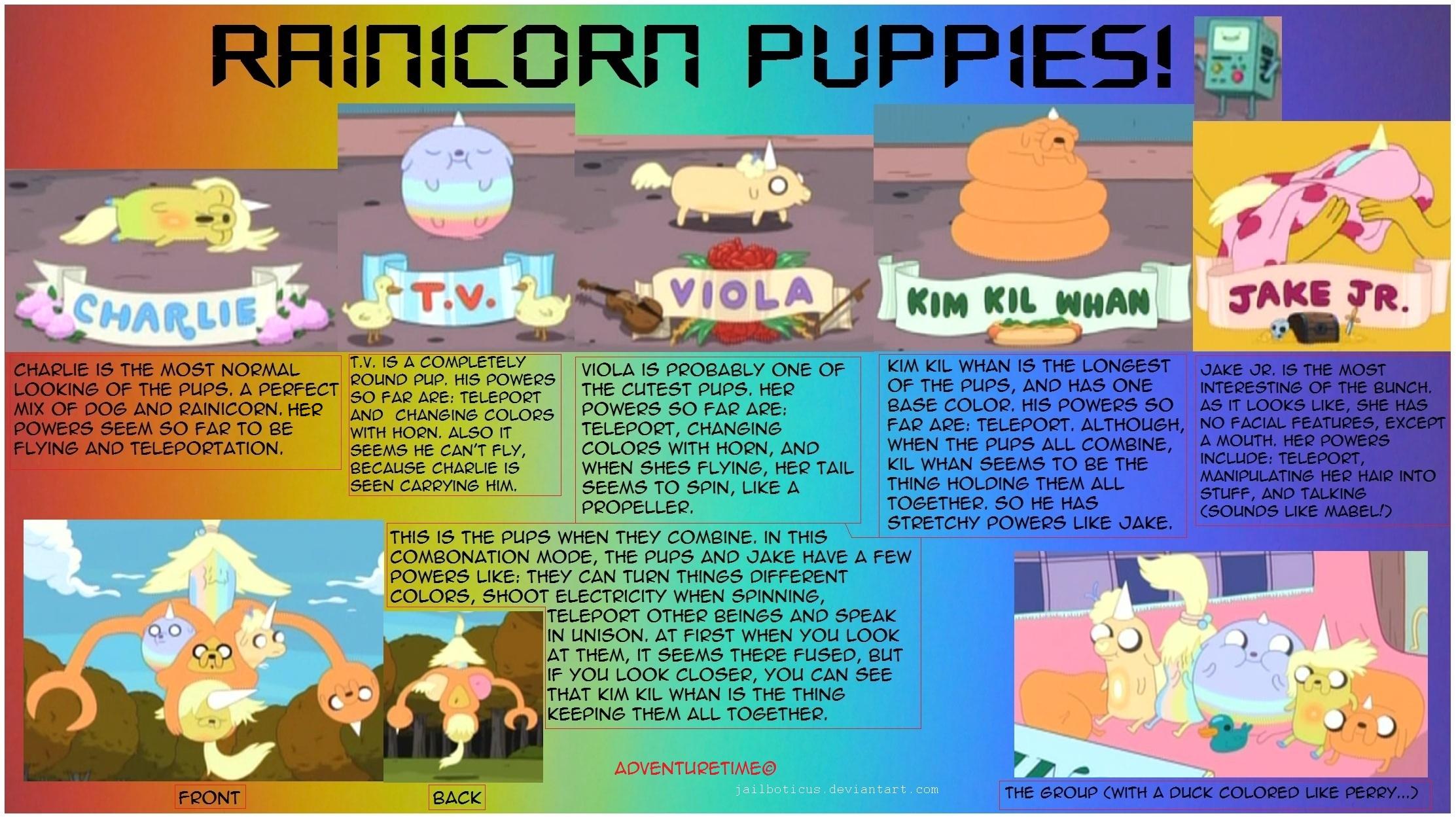 rainicorn puppies