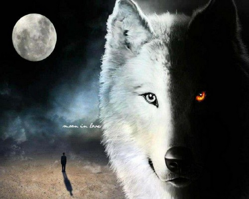 Fantasy wallpaper titled wolf