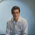 Alain Delon - alain-delon photo