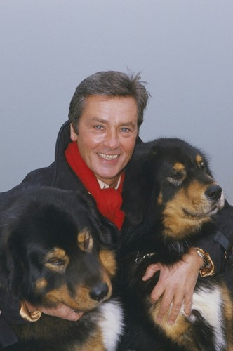Alain Delon Hintergrund possibly with a tibetan dogge titled Alain and his Liebe for Tiere ...