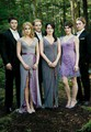 BD part 1 - the-twilight-saga-breaking-dawn-part-1 photo