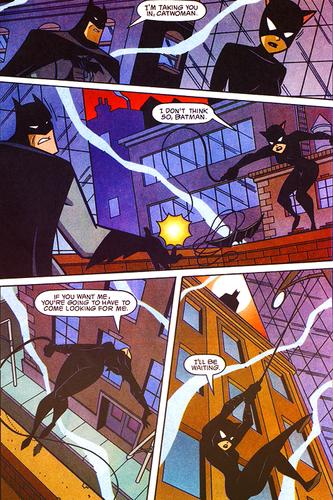 배트맨 & Catwoman